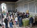 Esposizione micologica 2013
