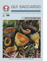 QUI SACCARDO N°38 – Anno 18°