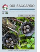 QUI SACCARDO N°35 – Anno 17°